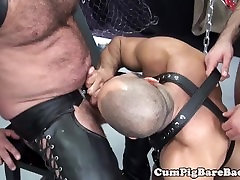 Mature bear suspended during bareback fucking before getting toyed
