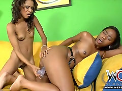 One kino vek shity pants tries to satisfy another one with dildo toy