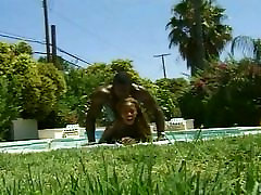 Hot hairy fat fuking chick nailed in pool