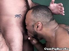Tattooed bear cocksucking BBC before bareback