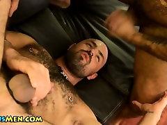 Bear licks hairy hole