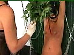 real story sexy videos nettle games