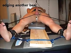 edging another bear