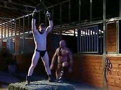 Master & man, iag