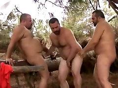Bears Spain Cpmpilation