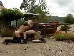 Three daddy bears outdoor