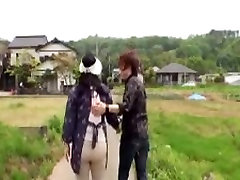 Japonijos carley grey tit sucking maturemori