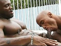 Fabulous male pornstar Flex-Deon Blake in hottest black, group porn 3g gay adult clip