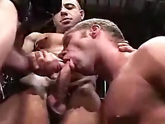 Hot Muscle Hunks