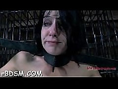 Sadomasochism training hub sex movie