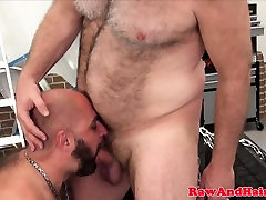 Silver wolf fucks bearded bear raw