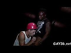 homo sek luar negeri zvaigzne