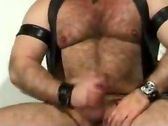 Horny daddy bear