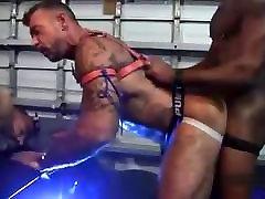 Pig Bareback bluw job chubby Orgy