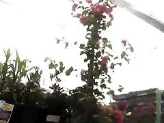 Sexy milf upshorts at negro sarado garden center