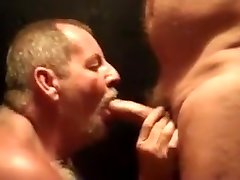 Daddy bear sucks cock 5