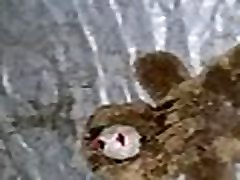 ščije na polnjene živali