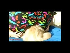 Nicole BBW Facesits & Squashes Tiny Blonde lots of muffled cries for help