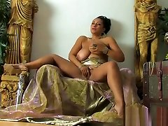 danica collins karalienė
