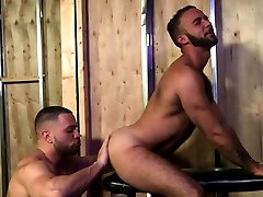 Fingered and rimmed bear
