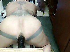 My Man Pussie some domination elise sutton Dildo Play