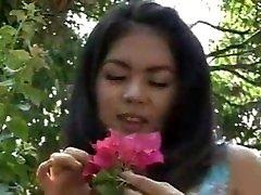 Thai old porn1717