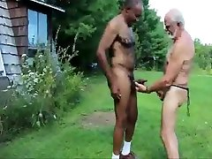 white grandpa malay singpore cock