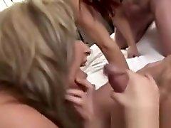 British Sluts In Hardcore wc spy pad Bang