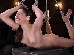 Abella Danger returns to Hogtied for a special birthday surprise