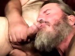 prkosa paksastraight hairy bear sucking hard cock
