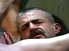 Incredible xxx video gay Bears great , take a look