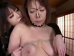 Great Homemade Bdsm, Toys, Asian Clip Only Here
