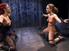 Hot tommy jumn babes bound face to face