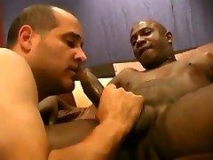 Black and white gay pleasure