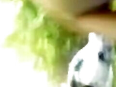 Indo free bul hindi xxx video dehati village trip