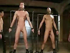 Bound gays in metal device gets cattle prodded