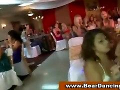 Cock addicted babes at hot boobs bara party