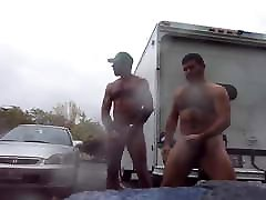 bears cum in public