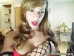 Hot Ladyboy with Huge Titties