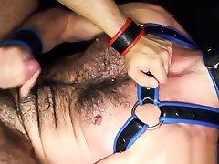 Bear enjoys slamming tight butthole