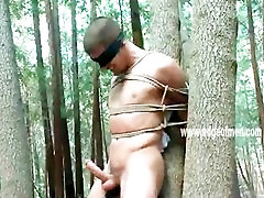 Naked gang bangs tranny gets tied up to a tree and blindfolded by a dominating