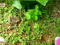 Telugu girl kajal agrawal heroine xxx vpn xxx video to lover in jungle Telugu audio