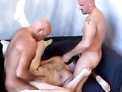 All Amateur Bears 2: Special Delivery