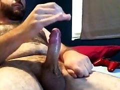 Very hora mundi young bear on webcam