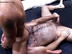 Muscle Bear Porn Guideto Fine Dining