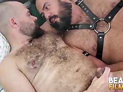 BEARFILMS sannyleone facking Bearded Bears Brian Bear And Lobo Bareback