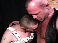 Leather bear creams ass