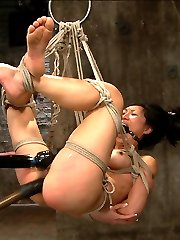 Welcome back tenacious Tia Ling. This bitch is one of the toughest I\'ve encountered. With delight she is subjected to some of the most intense predicaments her body can take. In scene one, Tia is bound in an extremely limited duration spread and neck play predicament. What makes this position so tough is with the feet elevated and the hands pulling back at an angle, she has no back support and only her ab and thigh strength keep her in place. A crotch rope is added and soon she starts suspending herself to avoid the torments being administered, which is super hot and sexy. So much that the barrel gets taken away entirely. The problem for her at this point is if she lowers her body too much, she will asphyxiate...Second Tia is bound in a face up fold, kind of like an ebi but very open. Bitch however is wrapped in plastic like she was found in a dumpster and left to hang like a piece of meat. The plastic adds a new challenge. It dulls her senses and makes the cane on her ass feel very different. A hole is cut to expose only her pussy and the nice butt plug in her ass. All she gets is anal orgasms from a slick thick cock in her slut whole. The bitch loves it, lapping it up, and cumming more and more. Finally all of the plastic is removed and she is left to suffer in her bondage.Finally Tia is bound in a discipline position where she has to will herself to stay still. She is extremely ticklish and between tickling and the cane, really can\'t behave. She is switched onto her stomach into an open arm / reverse chicken wing hogtie. She looks far too comfortable and is switched into a very uncomfortable strappado and hoisted into the air in an intense 5 point hogtie suspension. Made to cum again and again she suffers and loves her bondage at the same time.