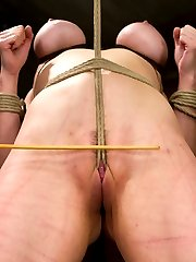 Welcome Annika back to HogTied and under the most intense conditions we can subject our bitches...
