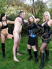 Triple Flogging